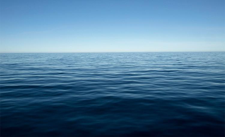 Blogg stilla hav